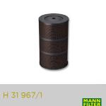 Filtros: H 31 967_1