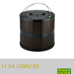 Filtros: H 34 1380_20